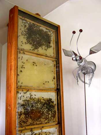 Ruche maison fabulous la ruche est idalement situe en for Salon apiculture