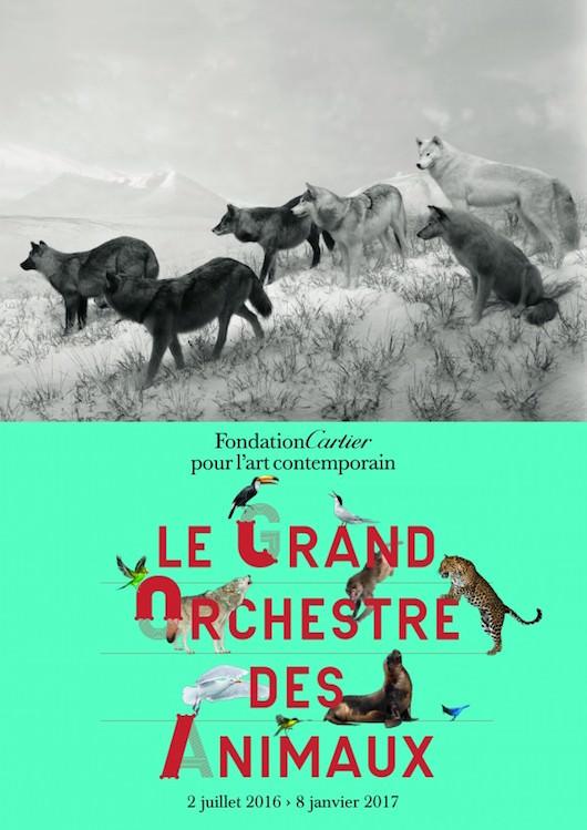 Exposition Le Grand Orchestre des Animaux à la Fondation Cartier du 2 juillet 2016 au 8 janvier 2017