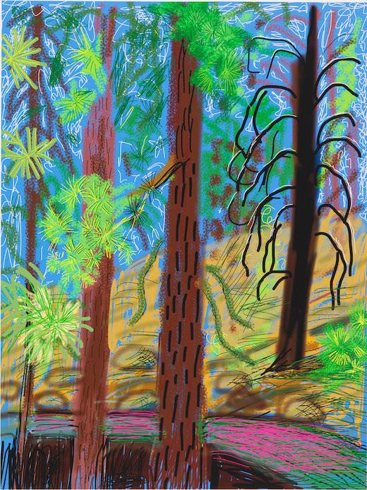 Exposition The Yosemite Suite de David Hockney à la Galerie Lelong jusqu'au 13 juillet 2017