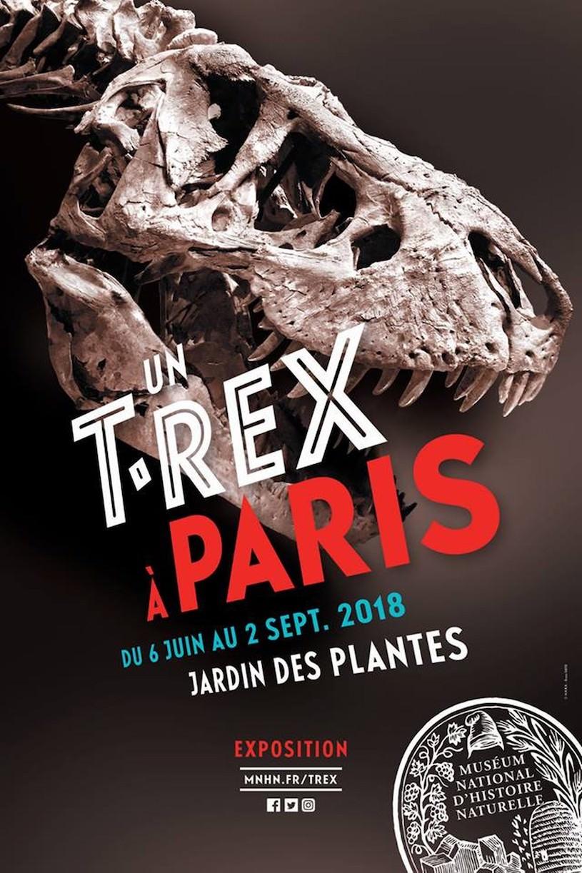 Exposition <em>Un T. Rex à Paris</em> au Jardin des Plantes du 6 juin au 2 septembre 2018