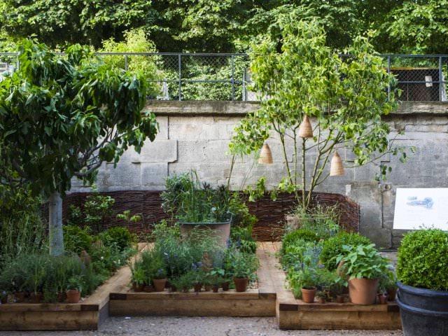 Jardins, Jardin 2019 aux Tuileries