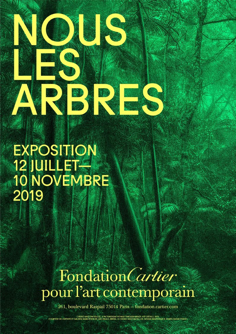Exposition Nous les Arbres à la Fondation Cartier jusqu'au 10 novembre 2019