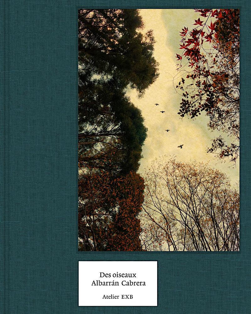 Livre Des Oiseaux d'Albarrán Cabrera, à acheter sur amazon.fr
