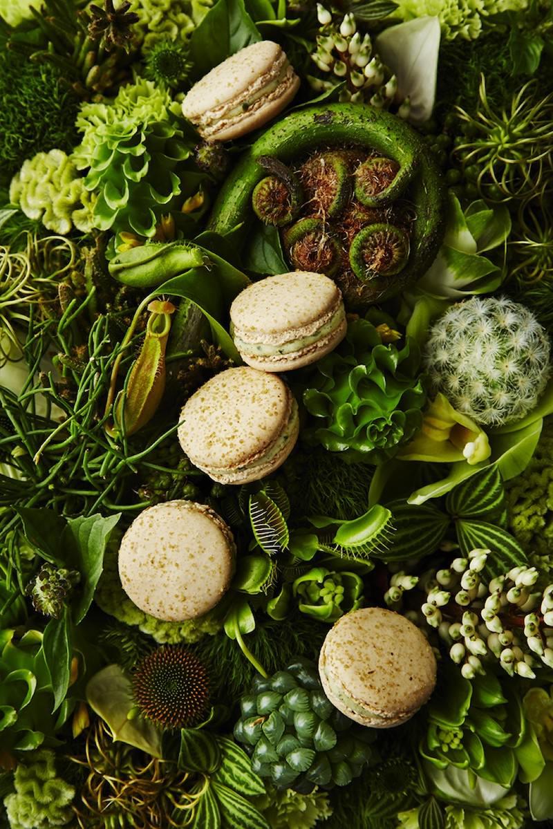 De nouveaux macarons 'nature' et éphémères chez Pierre Hermé